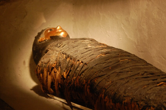 Learn about the Mummification process