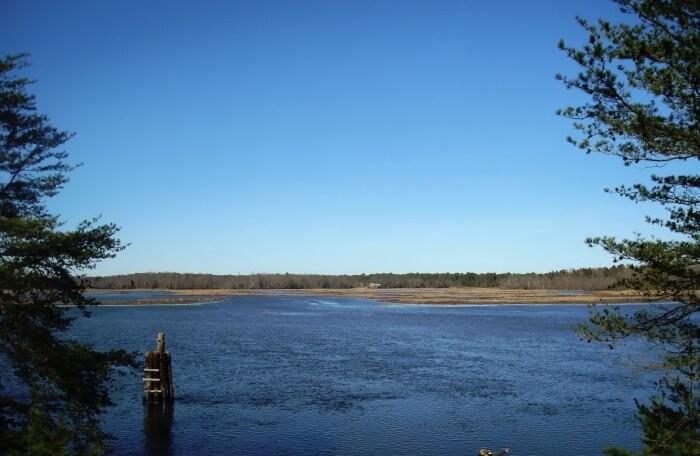 Maurice River Bluffs Preserve Millville