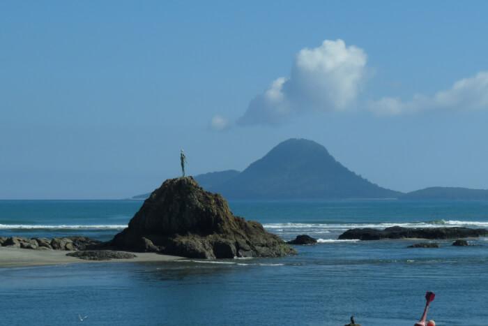 Moutohora Island Sanctuary