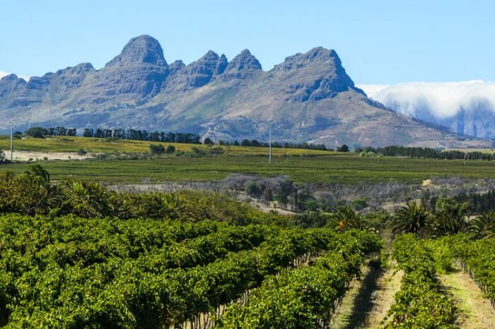 Other Things to do near Cape Town