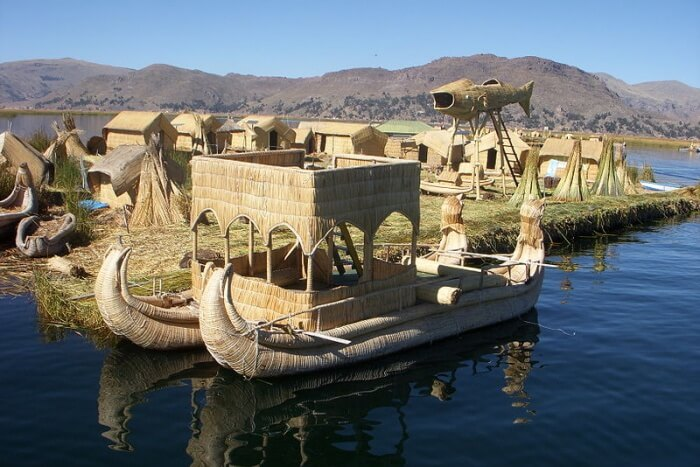 Sarus Cranes' Floating Island