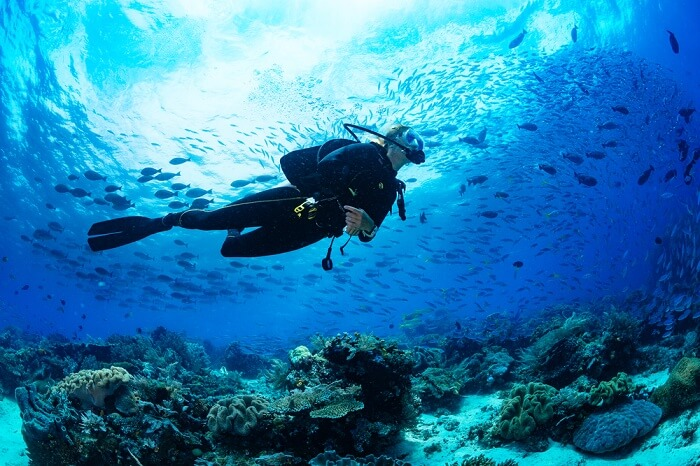 Awesome place for Scuba Diving In New Jersey