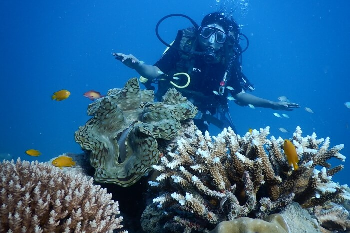 Scuba Diving in Italy Important Info