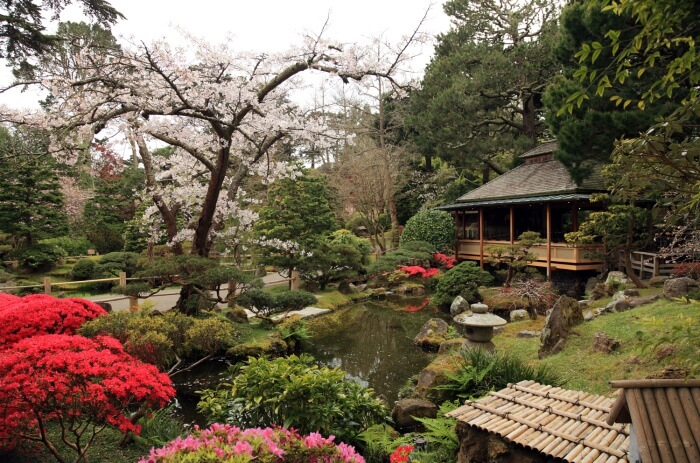 See the flower Gardens