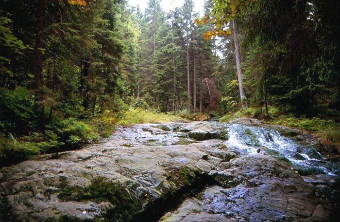 Seebach-Fall