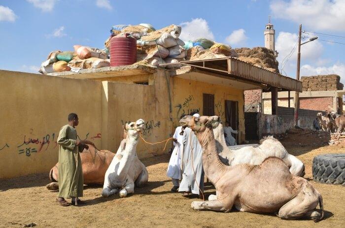 Souk-al-Gamaal