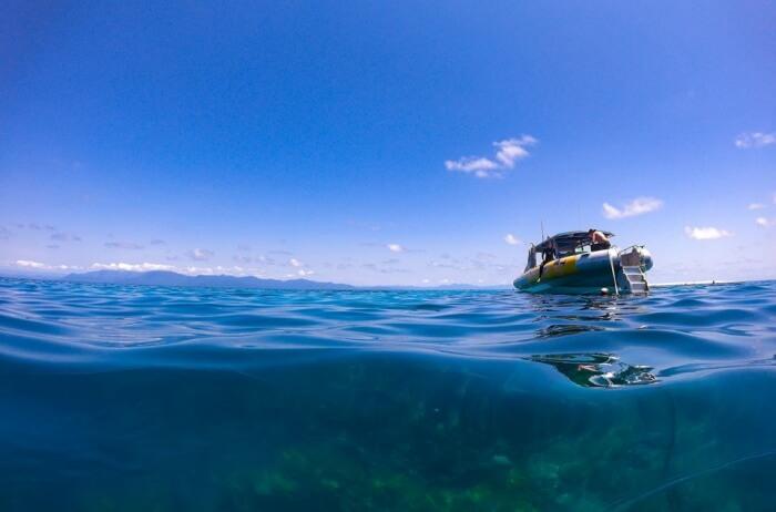 South Beach Divers