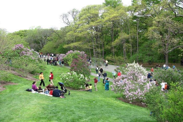 Harvard University park