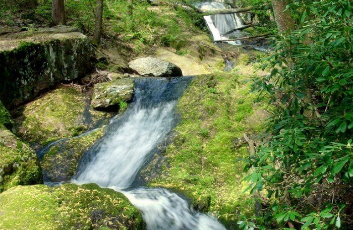 Tillman-Falls