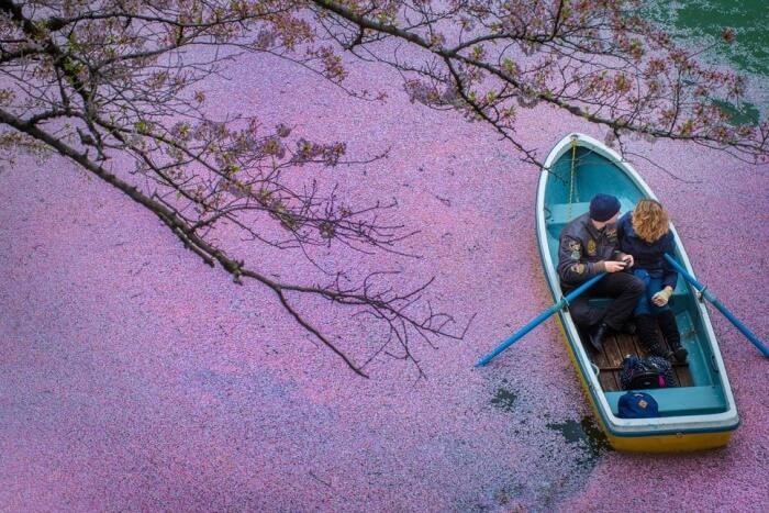 Valentine's Day History In Japan
