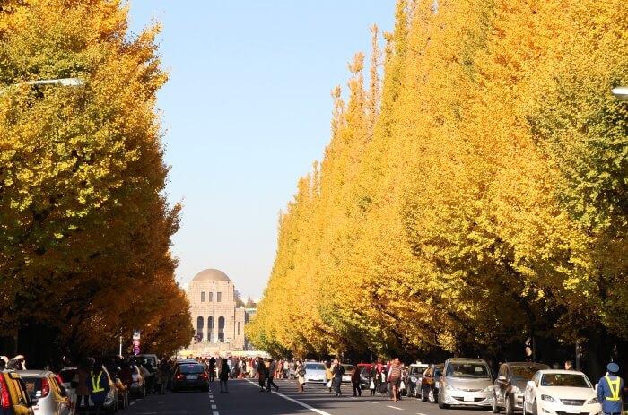 Visit Meiji Jingu-Mae