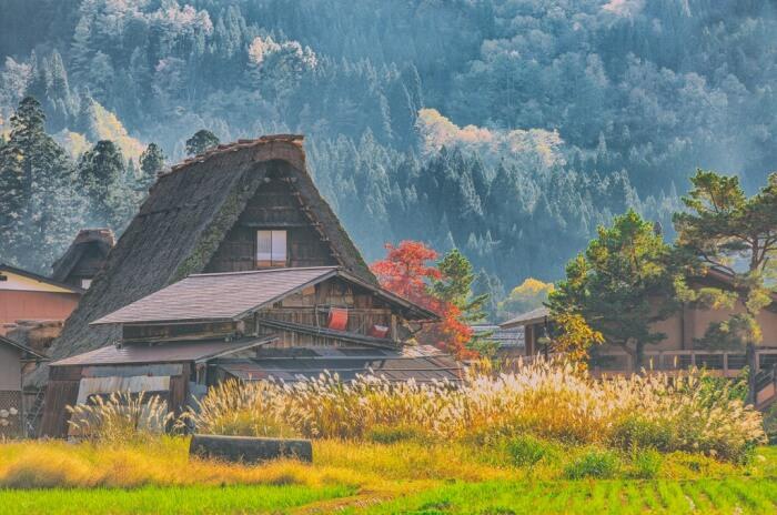 Visit the site of Shirakawa-Go