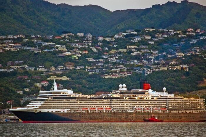 Wellington Cruise Excursion