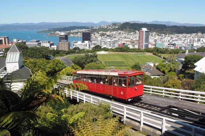 Wellington Hop-On Hop-Off Bus Pass