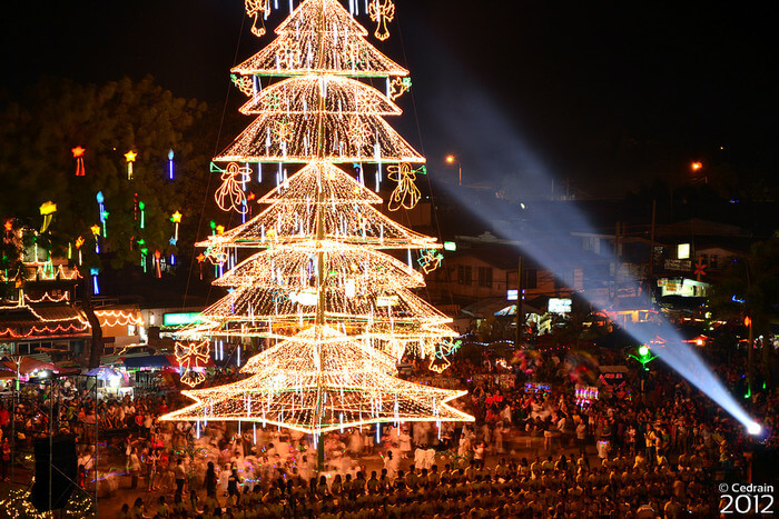 largest Christmas tree in the country