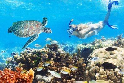 Woman snorkeling in Miami