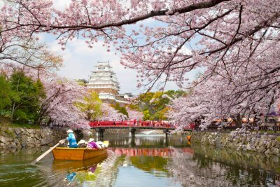 Fantastic Castles in Japan