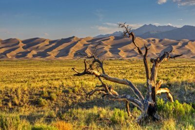 Awesome Great Sand Dunes National Park