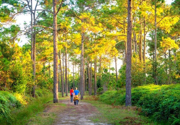 Phu Kradueng National Park