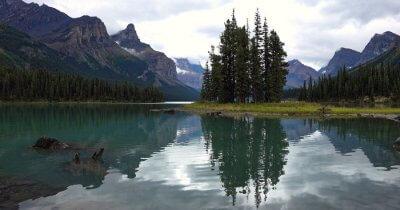 Splendid Wilflife of Canada