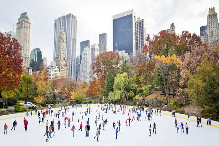 newyork in december cover