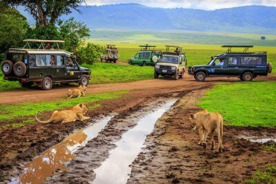 Exciting National Parks In Tanzania