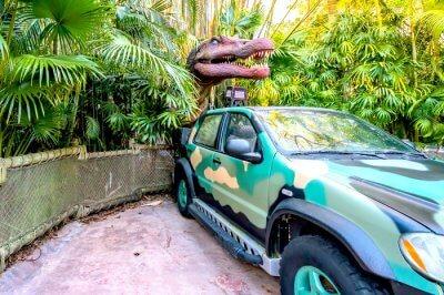 Best Zoos in Orlando