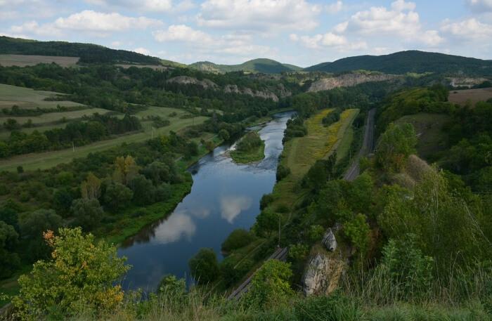 Nature Summer River