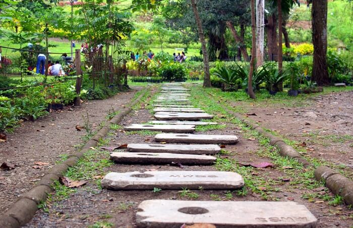 Get up-close with nature in the La Mesa Eco Park