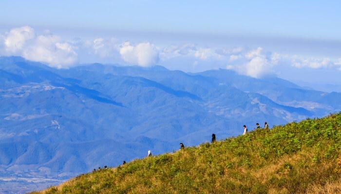 Kew Mae Pan Nature Trail in Doi Inthanon National Park - Chiang