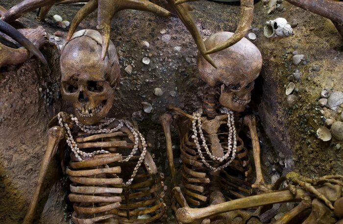 Skeletons view