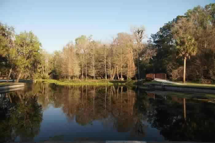 lake view and park