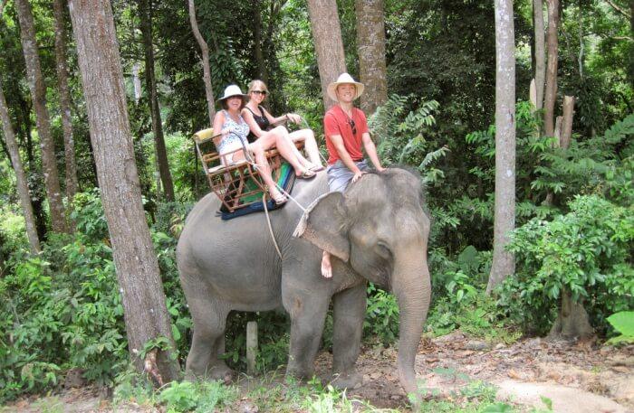 Khao Lak Discovery Elephant Trekking