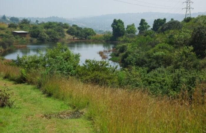 Kloofendal Municipal Nature Reserve