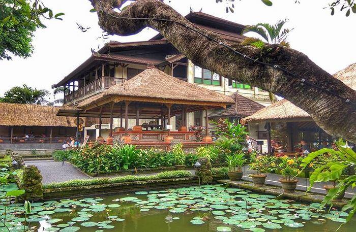 Lotus Pond Café