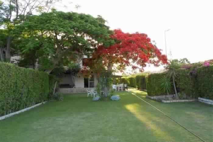 Park of villa