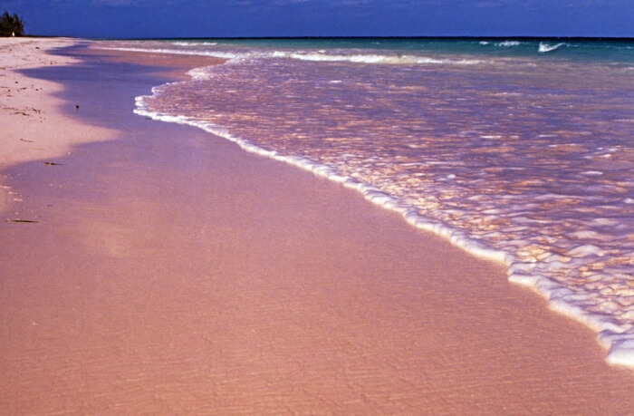 Mesmerize the Caribbean beauty on Pink Sands Beach