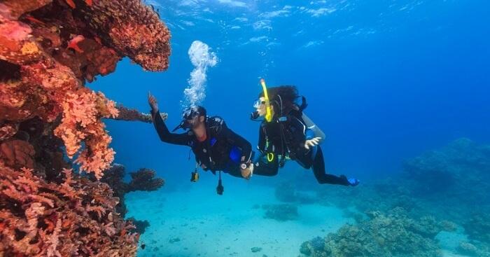 authentiek laag geprijsd gloednieuw Scuba Diving In Colombo: 10 Best Places For Doing It Like A ...