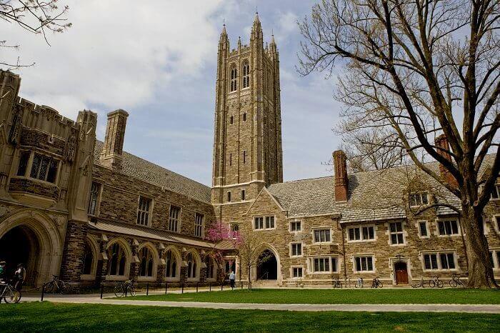Princeton cover