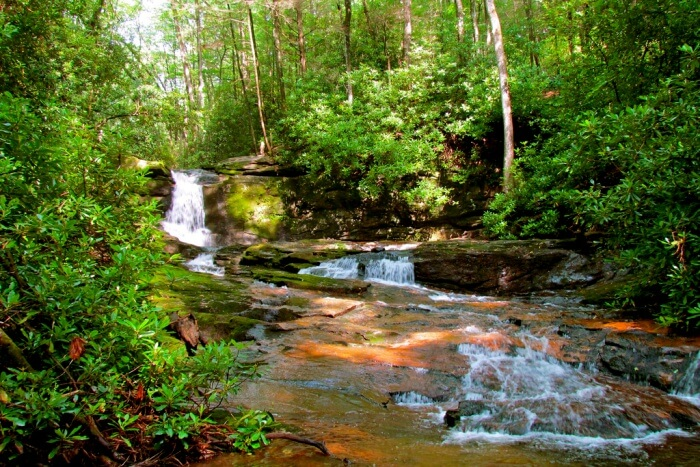 Raven-Cliffs-Trail-Chattahoochee-National-Forest.
