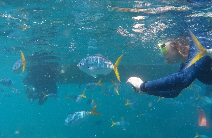 Snorkeling-Tour