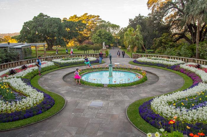 The Royal Botanical Garden