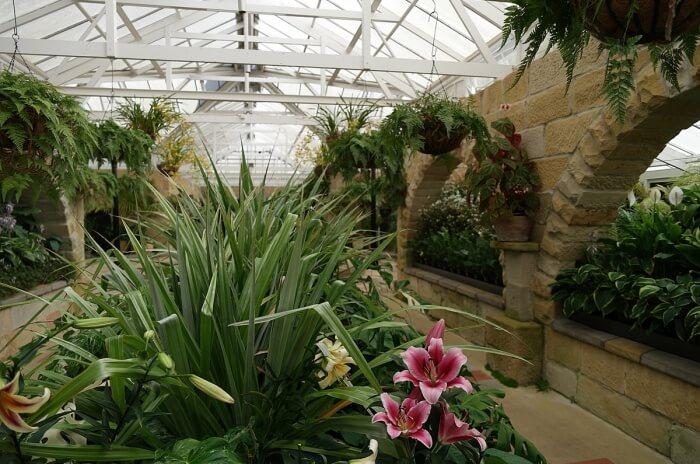 Visit Royal Tasmanian Botanical Gardens