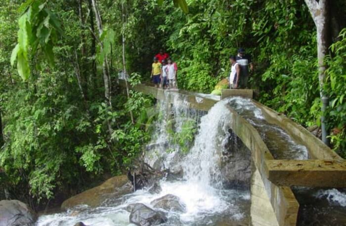 Vivid Waterfalls