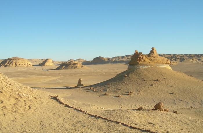 Wadi Al-Hitan