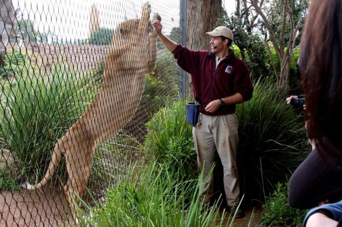 At Werribee Open Range Zoo
