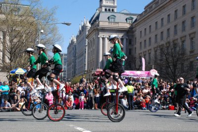 Amazing Festivals In Washington DC