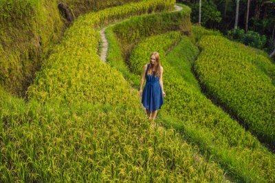 Exotic Tegallalang Rice Terraces