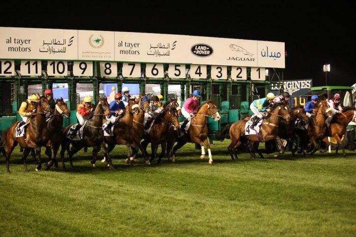 meydan horse race