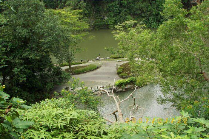 About the Bukit Batok Nature Park
